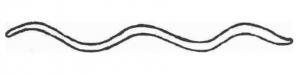 Fórmula del orgasmo c