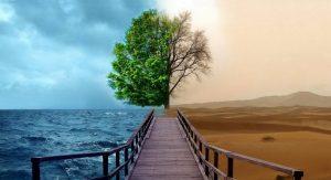 Dos entornos